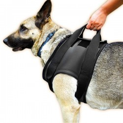 JULIUS rehab harness (shoulder)
