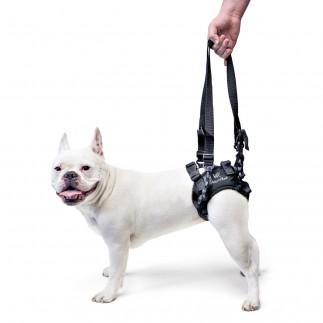 Imbracatura regolabile per supporto posteriore