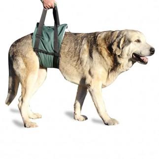 Gelenkschoner Fur Hunde