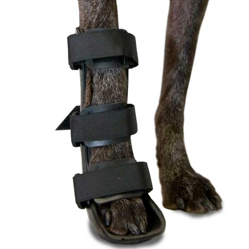 Front Leg Splint for Dogs