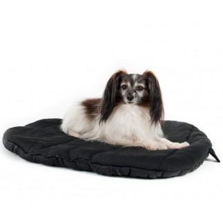Especially older dogs mattress roll