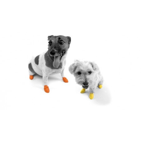 Botas para perro Pawz (caucho)