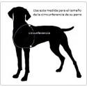 Talla Arnes para perro Double Back Harness