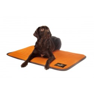 Antiescaras mattress and dog Antihumedad