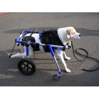 Accesorio ruedas delanteras para perro