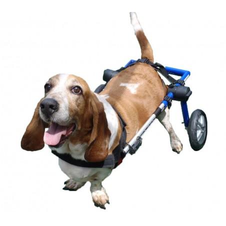 Chariot roulant réglable pour chiens
