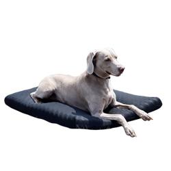 Colchón para perros en rehabilitación