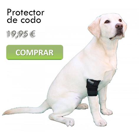 Protector de codo canino