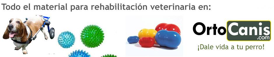 Material para rehabilitación veterinaria