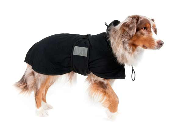 Back on Track thermal jacket for Agility Dogs