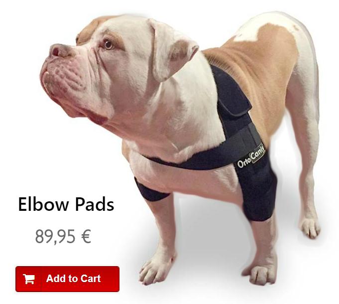 Elbow Dysplasia