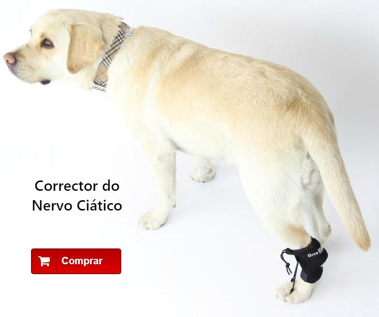 Corrector do Nervo Ciático