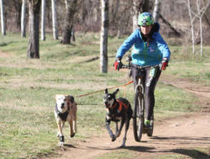 Land mushing