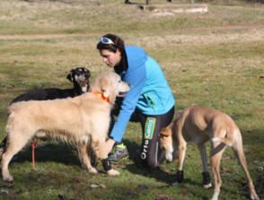 corsa con cani da slitta
