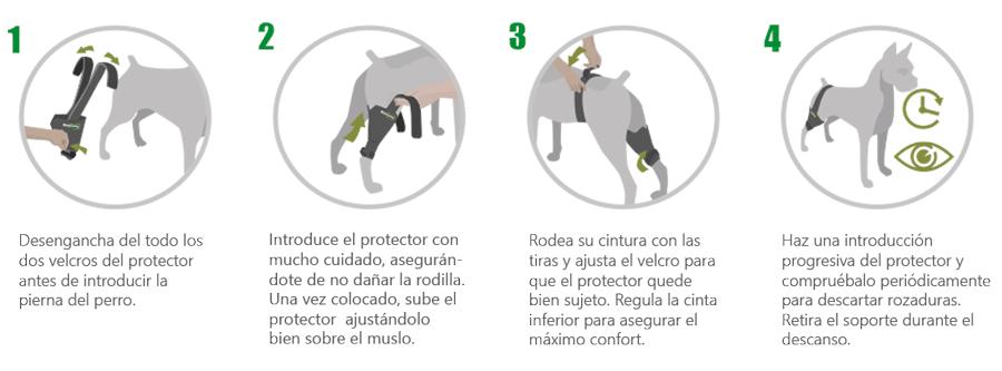 Protector de rodilla a medida perro con artrosis