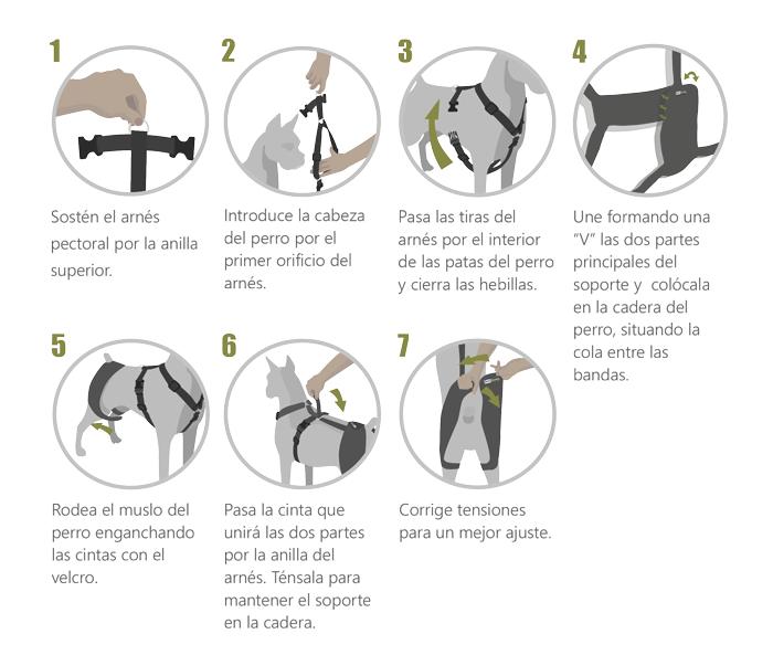 instrucciones soporte de cadera
