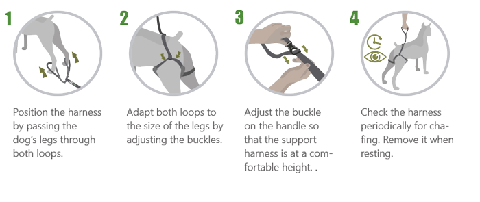 6. Rear-Support Harness for Dogs