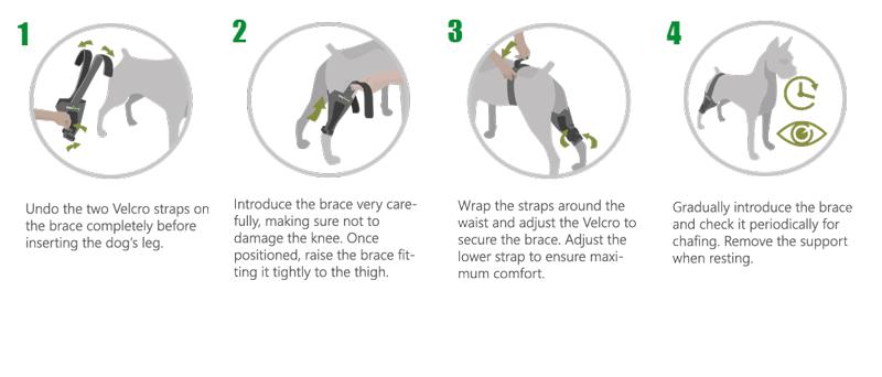 Customizable Knee Brace for Dogs