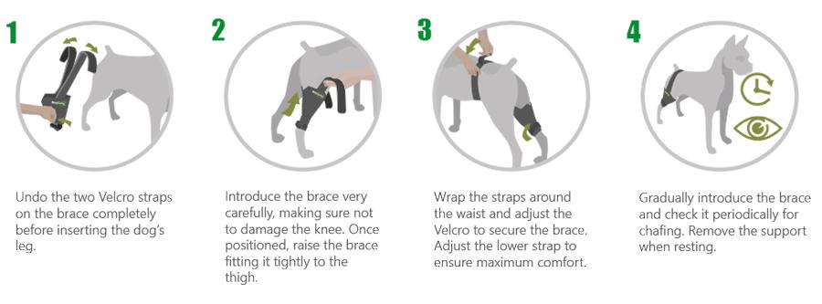 Custom Dog Knee Brace