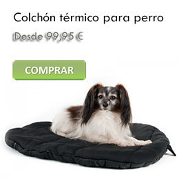 Orthopedic mattress for dogs
