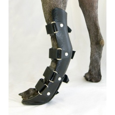 Immobilizing splint for dogs