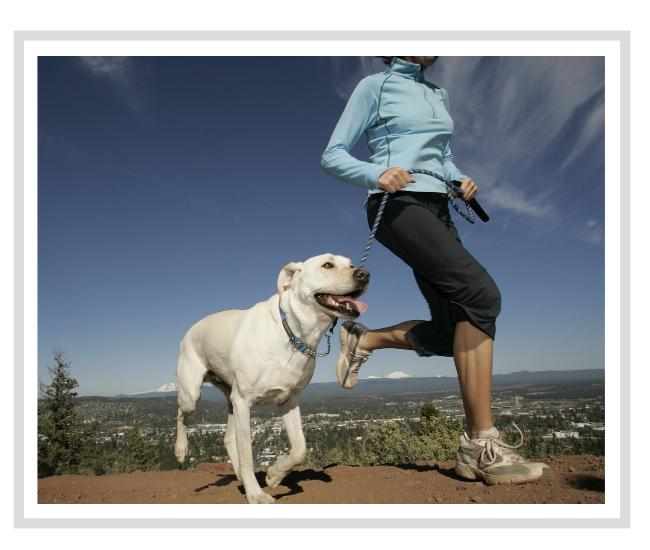 cane sportivo