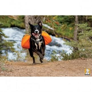 Packtaschen Anfahrt Hunderudel