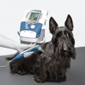 Intelect Vet Therapy System