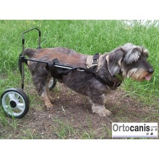 Cadeira de rodas para cachorro