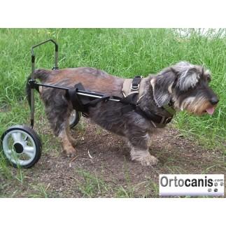 Hunde-Rollstuhl