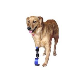 Protesis para perro amputado