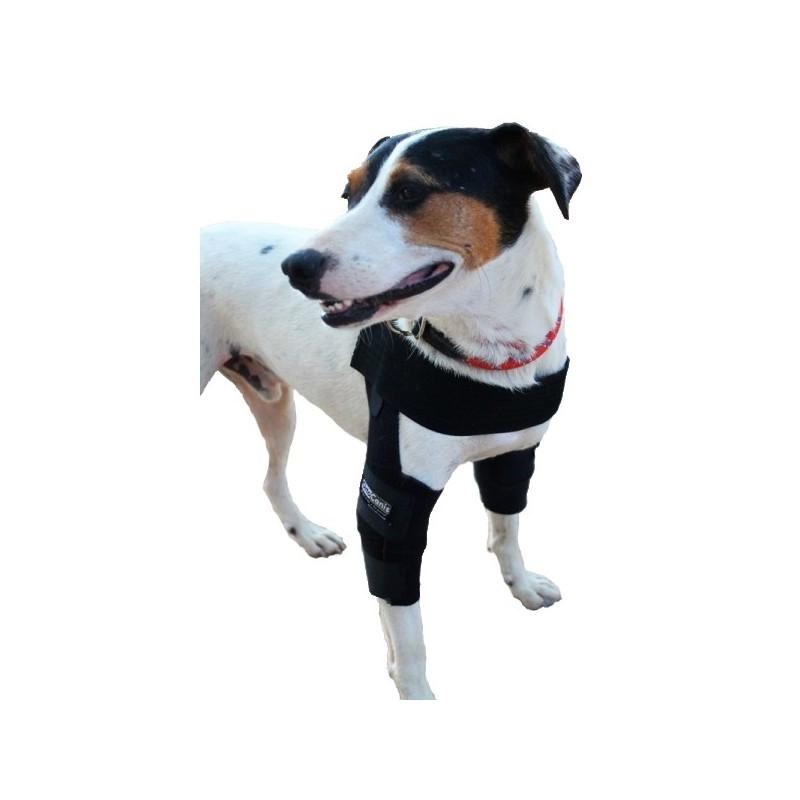 Emballez canine orthèse de coude