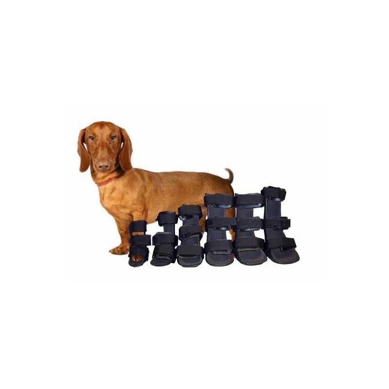 Pack Férula ortopédica para perro. Miembro Anterior.
