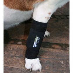 Support for carpal Pack