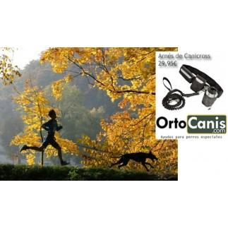 Canicross Harnais mains libres