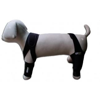 Maniquí perro