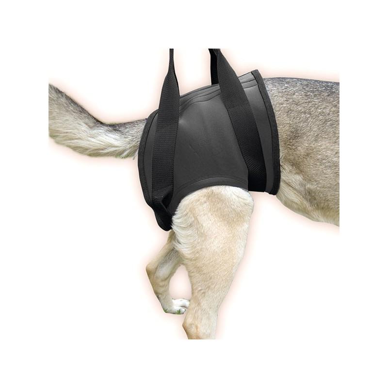 Imbracatura sostegno posteriore JULIUS