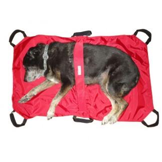 Civière de transport pour chien