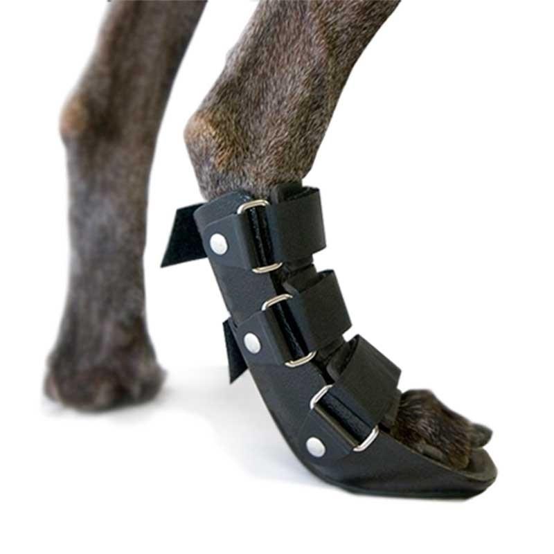 Immobilizzatore a scarpa per zampa posteriore