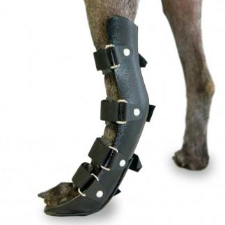 Férula ortopédica para perro. Miembro posterior.