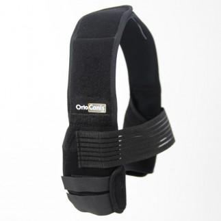 팔꿈치 보호대