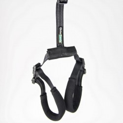 Harness for dog with hip dysplasia