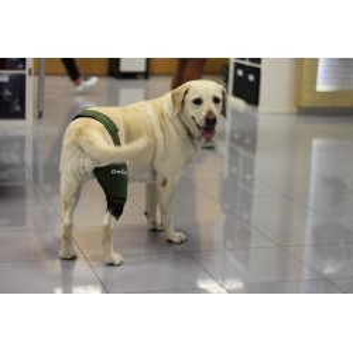 Protetor de joelho personalizado