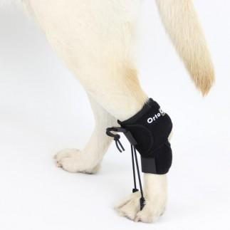 Correcteur proprioceptif pour chien