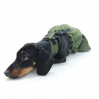 Manteau protecteur chiens paralysés ou incontinents
