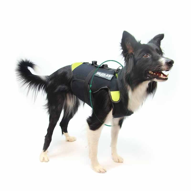 Lifting harness Dogaids