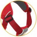 Web Master Harness ruffwear canino