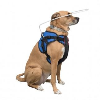 Harness mit Reifen für blinde Hunde