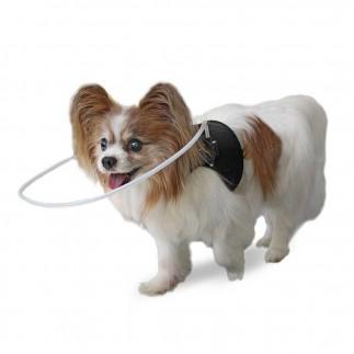 Harnais avec anneau protecteur pour chiens aveugles