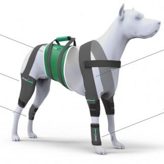 Producto amazon - Tutore carpo per cani - 8-10 cm (Taglia M)